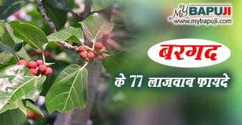 Bargad ke Fayde in hindi