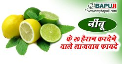 नींबू के फायदे और नुकसान | Lemon Benefits and Side Effects in Hindi