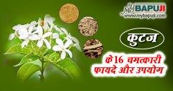कुटज के फायदे और नुकसान गुण व उपयोग | Kutaj in Hindi