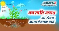 वनस्पति जगत की रोचक आश्चर्यजनक बातें | Vanaspati Jagat ki Rochak Baate