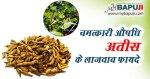 अतीस के फायदे गुण उपयोग और नुकसान | Atish ke Fayde aur Nuksan in Hindi