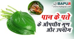 Paan Khane ke Fayde aur Nuksan | पान खाने के फायदे गुण उपयोग और दुष्प्रभाव