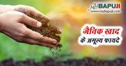 जैविक खाद के अमूल्य फायदे - Jaivik Khad ke Labh in Hindi