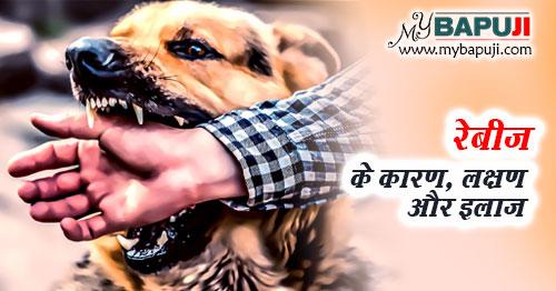 Rabies Ke Lakshan Karan Aur Ilaj Hindi me