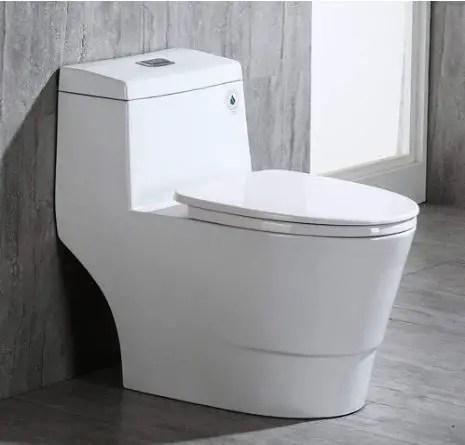WOODBRIDGE T-0019, Dual Flush Elongated One Piece Toilet