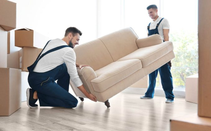 An employee to move furniture