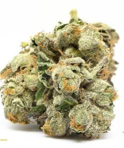 Rockstar Marijuana