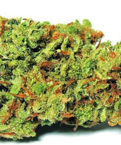 Strawberry-bannana-kush