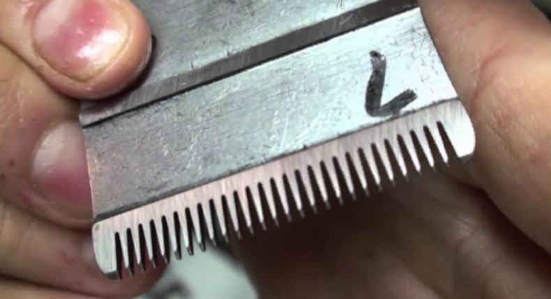 sharpening clipper blades with salt,  how to sharpen clipper blades with sandpaper,  best sharpener for clipper blades,  how to sharpen clipper blades with dremel,  learn to sharpen clipper blades,