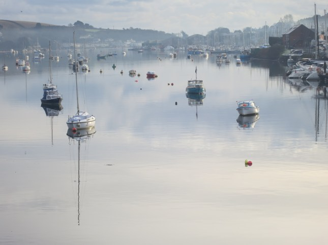 Silver reflections on The Penryn River