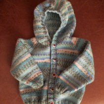 Hoodie for Grand-baby due this year - 6 month size