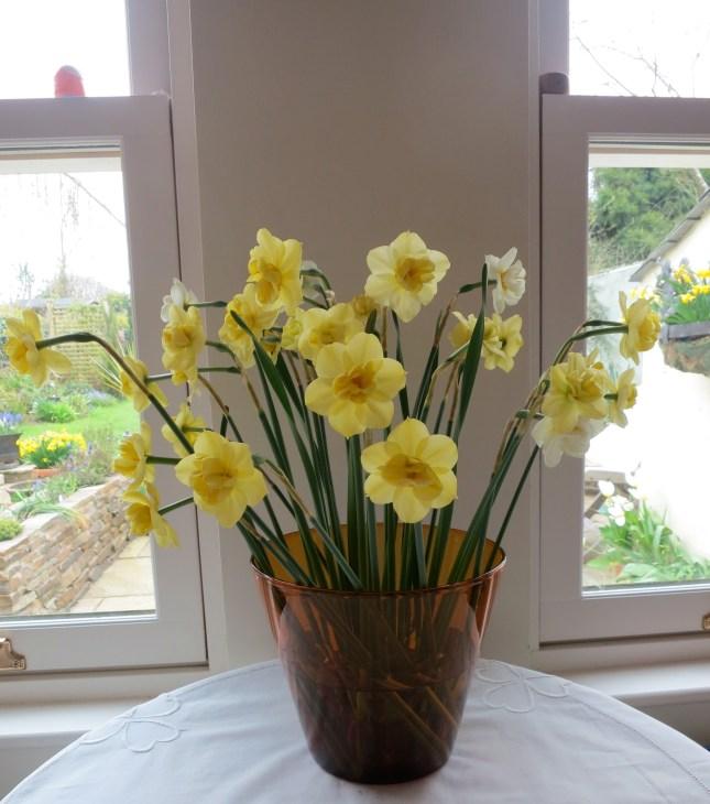 Narcissi in Mum's vase