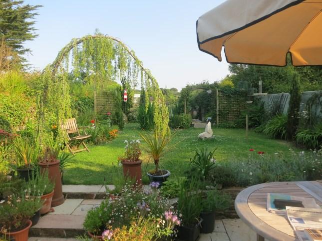 Garden July 18th 2013