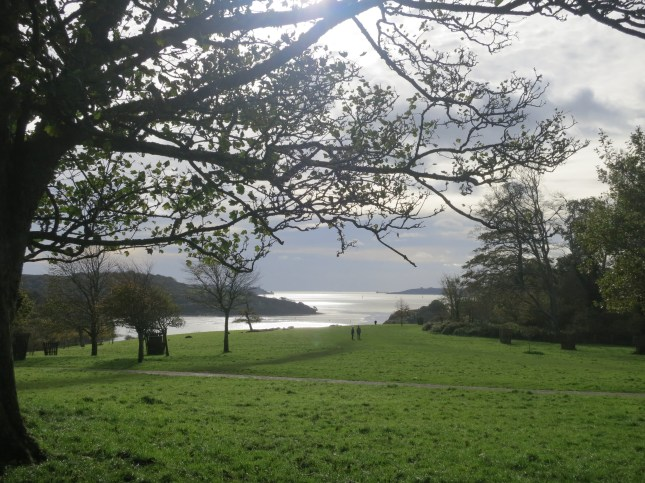 From Trelissick over The Carrick Roads