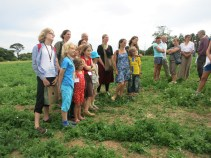 Listening to the director in the turnip field