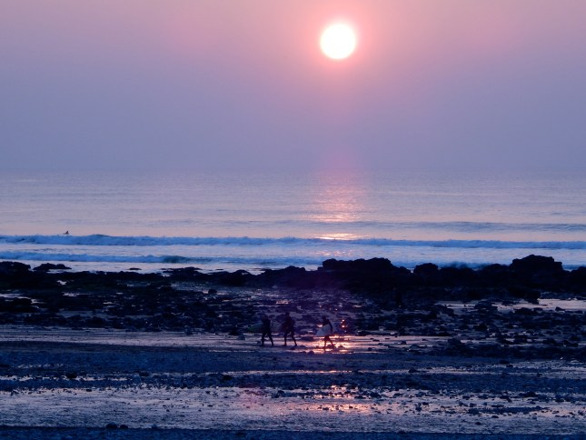 Surfers going home at sunset