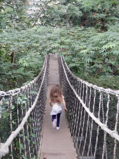 Running over the wobbly footbridge