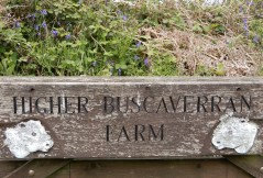 Delightful sign