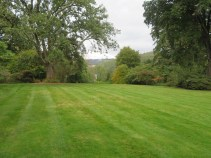 More cut grass and long views to the pile on the horizon where there are deer playing in the garden