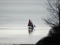 Red sailed Gaff