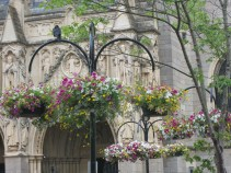 Beautiful hanging baskets outside the Cathedral