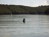 Canoeing in the River Fal near King Harry Ferry