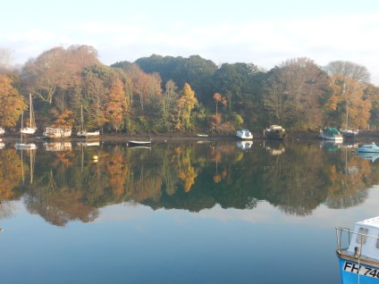 The Penryn River this morning
