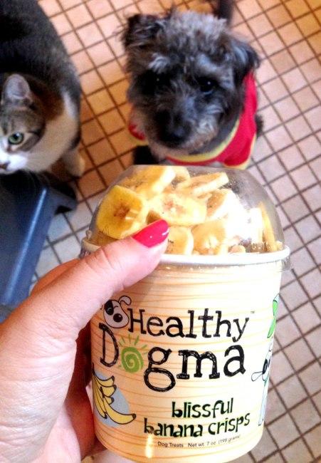 Healthy Dogma Banana Chips
