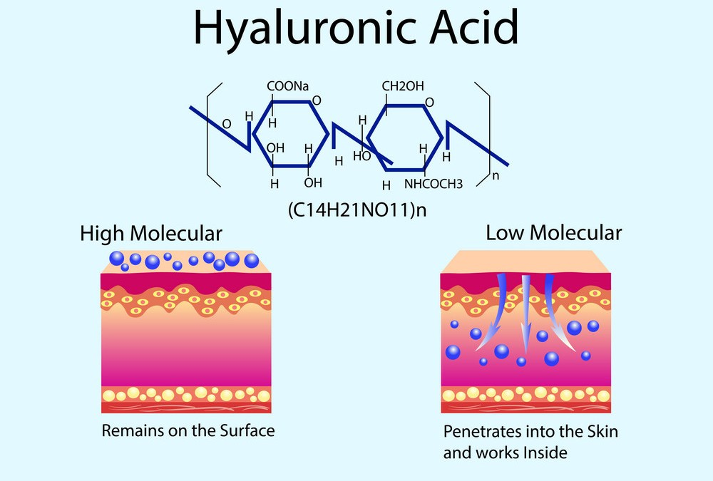 Hyaluronic acid in skin-care products. Low molecular and High molecular.