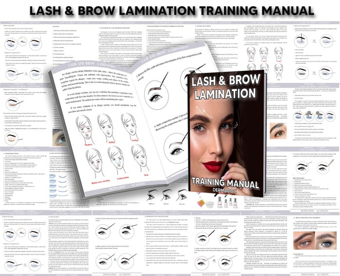online brow lamination and lash lift course