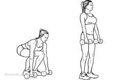 Dumbbell_Deadlift1