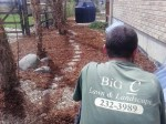 Big C Lawn & Landscaping