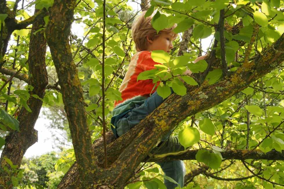 Montessori: 7 frasi per trasmettere fiducia al tuo bambino