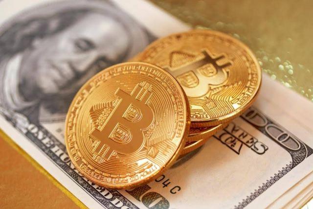 blockchain certifications