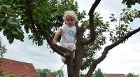 Children arrested for playing in tree