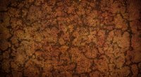 Royality free high resolution premium custom wooden cork texture