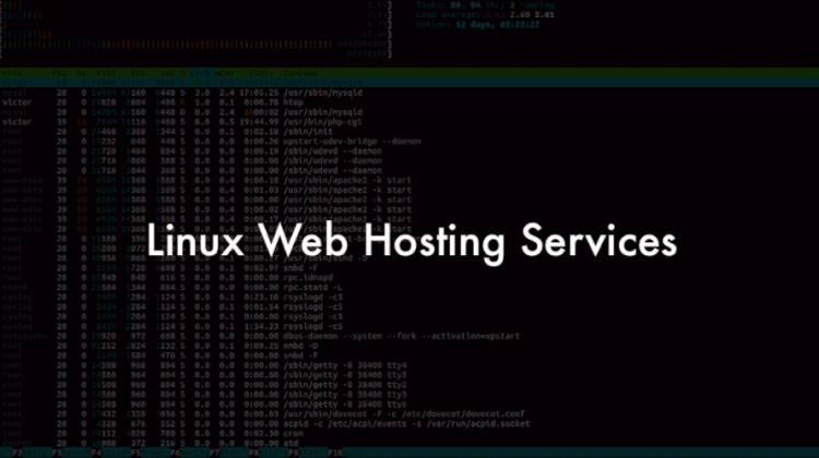 Linux web hosting services