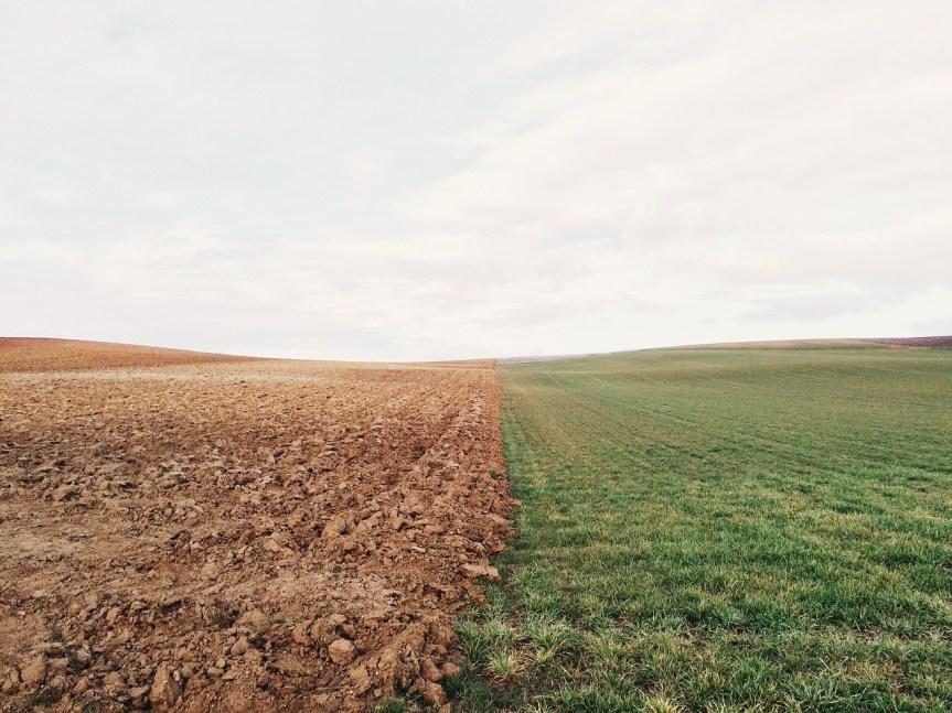 Quel est le prix d'un terrain agricole?