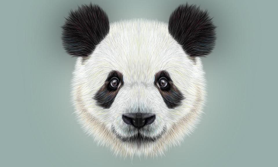 panda proof - Learn how to get your site Panda Proof?