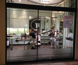 Dog's spa with showing window at Roppongi. So funny looking at them