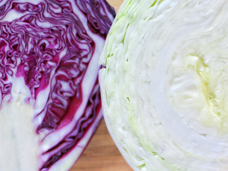 Green Cabbage vs Red Cabbage