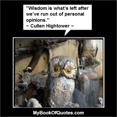 Wisdom is what's left after we've run out of personal opinions