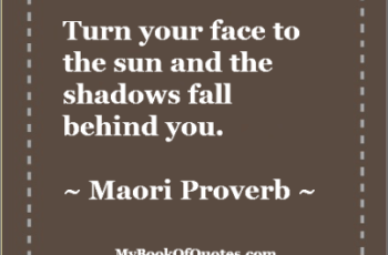 Turn your face to the sun and the shadows fall behind you - Proverb