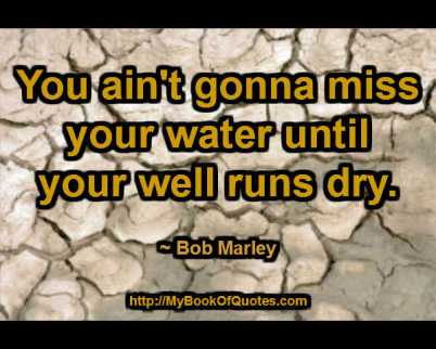You ain't gonna miss your water until your well runs dry