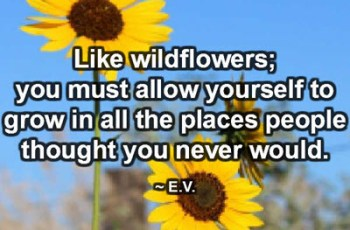 Like wildflowers; you must allow yourself to grow in all the places people thought you never would. ~ E.V.