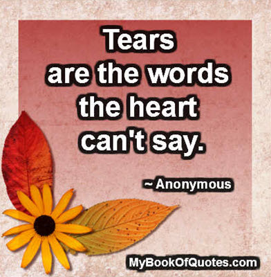 Tears are the words the heart can't say.~ Anonymous