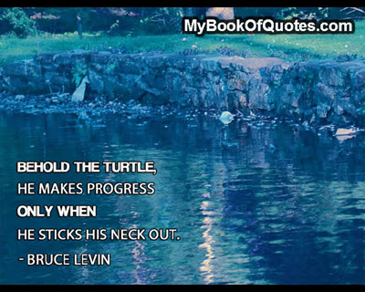 Behold the turtle. He makes Progress only when he sticks his head out. ~ Bruce Levin