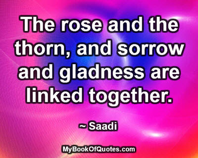 The rose and the thorn, and sorrow and gladness are linked together. ~ Saadi