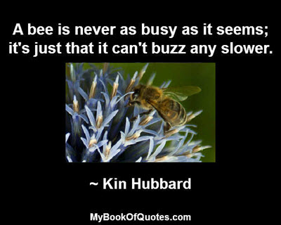 A bee is never as busy as it seems; it's just that it can't buzz any slower. ~ Kin Hubbard