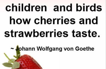 One must ask children and birds how cherries and strawberries taste. ~ Johann Wolfgang von Goethe